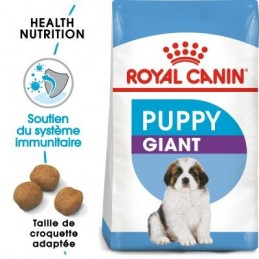 Royal Canin Giant Puppy pour chiot